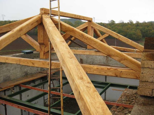 Ingforum leggi argomento x specialisti del legno nodo for Inquadratura del tetto del padiglione
